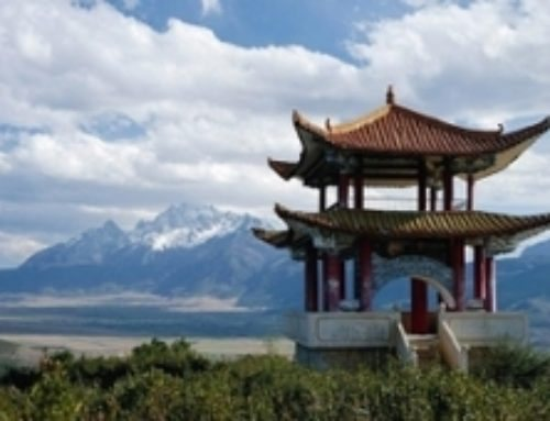 Как лечат заболевания позвоночника в Китае