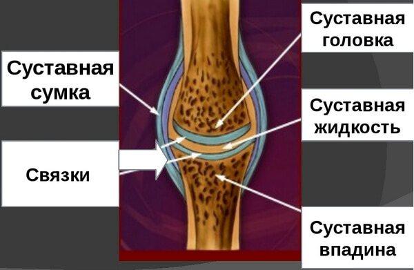 Изображение - Левомеколь при бурсите локтевого сустава bursit-loktevogo-sustava-simptomyi-i-lechenie1
