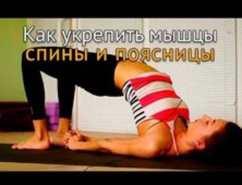 Как укрепить мышцы спины или профилактика заболеваний позвоночника