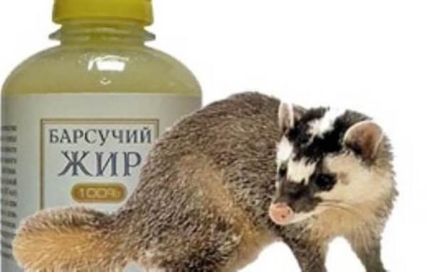 Изображение - Крем барсучий жир для суставов barsuchiy-zhir1