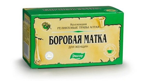 фито чай боровая матка