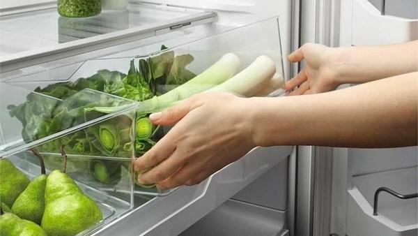 хранение шпината в холодильнике
