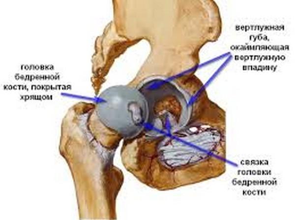 Артроз бедренном суставе лечение физио отложением солей мочевой кислоты в суставе
